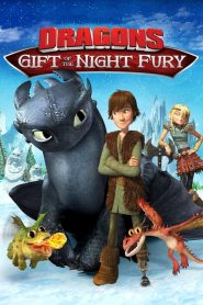 Dragons: Gift of the Night Fury (2011)